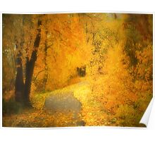 The Pathway of Fallen Leaves Poster