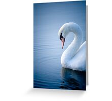 Early Morning Swan Greeting Card