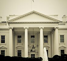 White House by Joe McTamney