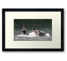 Water Play Framed Print