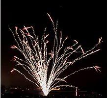 Firework tree Photographic Print
