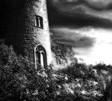 Ludlow Castle by Jon Harbottle