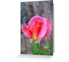 Rosebud and Diamonds Greeting Card