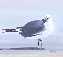 """"""" Livingston """" Seagull On the Beach by Matthew Campbell"""