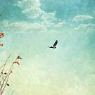 Free Yourself by Katayoonphotos