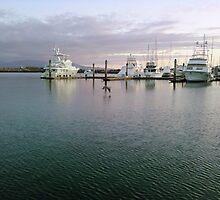 Marina Sunset with fishing boats by deedeeoriginals