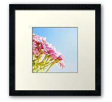 Pink Tan Framed Print