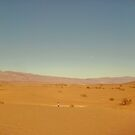 lovely desert by Priscilla Rodriguez