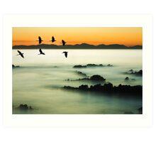 Birds over water Art Print