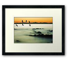 Birds over water Framed Print