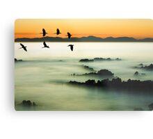 Birds over water Metal Print