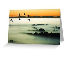 Birds over water Greeting Card