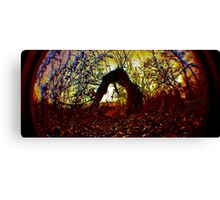 The Trolls Backyard Canvas Print