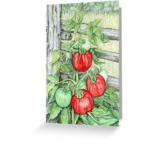 Tomato Plant Greeting Card
