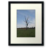 Australia Outback Framed Print