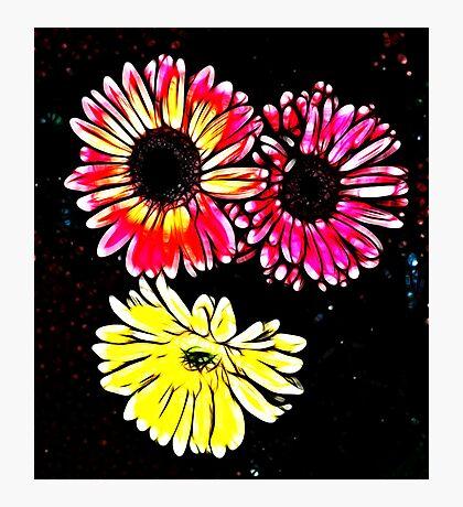 Fractalius Flowers Photographic Print