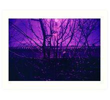 Purple Twigs Art Print