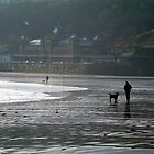 Doggie Walkers by TREVOR34