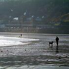 Doggie Walkers by TREVOR34