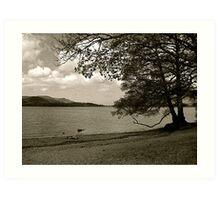 Lake District (1): Derwent Water Art Print