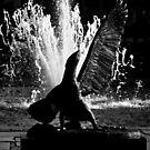 Eagles Fountain by Marcin Retecki
