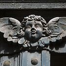 France - Lot - Angel by Thierry Beauvir