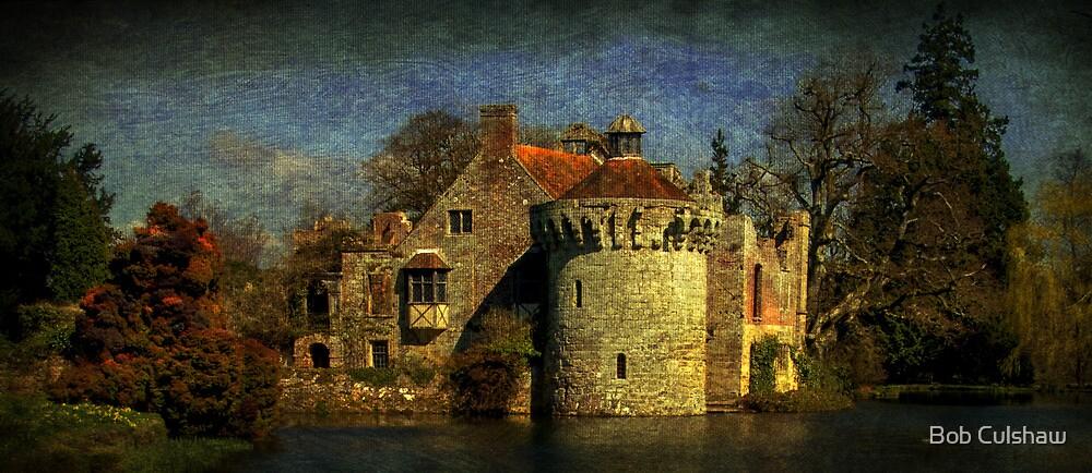 Enchanting Remains by Bob Culshaw