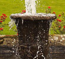 Water Fountain by Ryan Davison Crisp