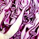 Cabbage Squigglin' by LouJay
