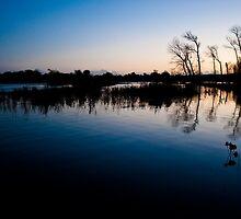 Pulborough flood plain no.2 by Emma Turner