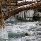 Winter's Freeze by Gilly1