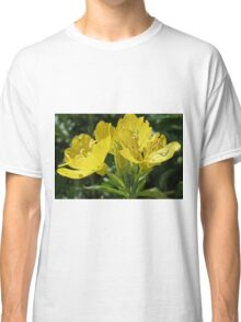 Primrose - Sundrops in the Meadow Classic T-Shirt