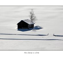 the silence is white by Erwin G. Kotzab
