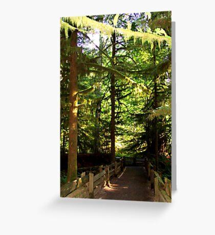 Walkway Greeting Card