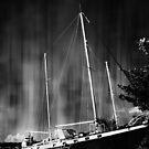 A vessel majestic  by S .