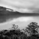 Inveruglas View by Susan Dailey