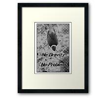Gravity Bird Framed Print