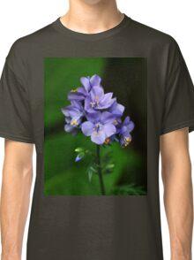 Jacobs Ladder Classic T-Shirt