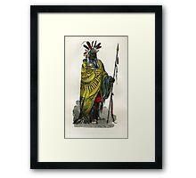 Native American  #2 Framed Print