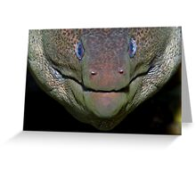 Giant Moray Greeting Card