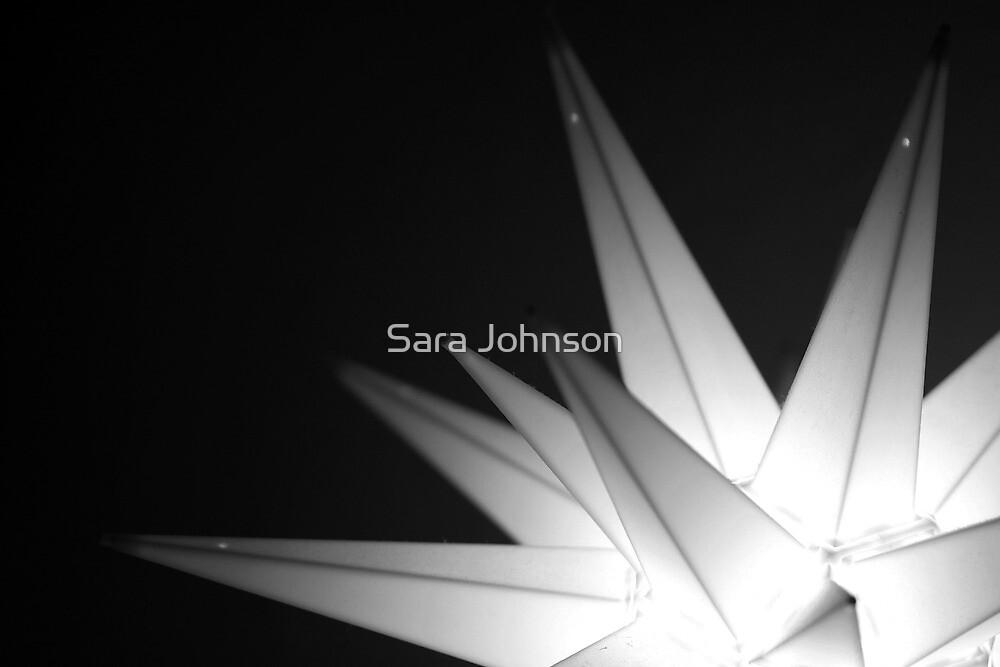 The Star of Bethlehem by Sara Johnson