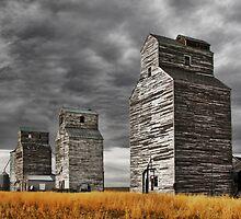 Montana Grain Elevators by James Larson