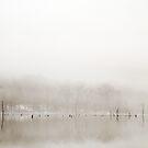 Breathe by Mary Ann Reilly