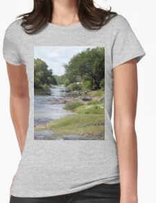 a vast Zambia landscape Womens Fitted T-Shirt