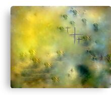 HOPES OF PEACE .dedicated to men  and women at war!! Canvas Print