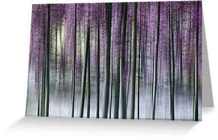 Whispering Pines by Kelly Cavanaugh
