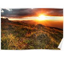Feathertop sunset Poster