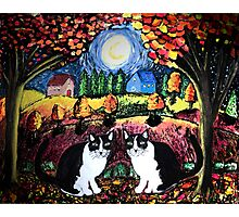 Two Cats and The Moon Photographic Print