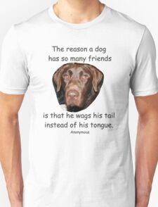 A Dog Has Friends T-Shirt