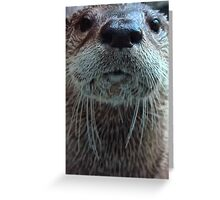 Whatcha Do'in? Greeting Card